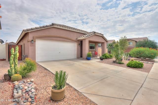 20961 N Jocelyn Lane, Maricopa, AZ 85138 (MLS #6295619) :: Justin Brown   Venture Real Estate and Investment LLC