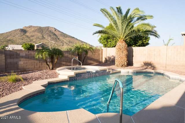 6114 W Saguaro Park Lane, Glendale, AZ 85310 (MLS #6295625) :: Morton Team | A.Z. & Associates
