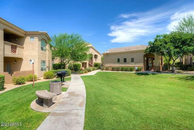 29606 N Tatum Boulevard #204, Cave Creek, AZ 85331 (MLS #6295639) :: Justin Brown   Venture Real Estate and Investment LLC