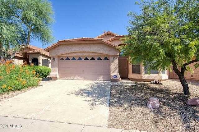 4706 E Jaeger Road, Phoenix, AZ 85050 (MLS #6295660) :: The AZ Performance PLUS+ Team