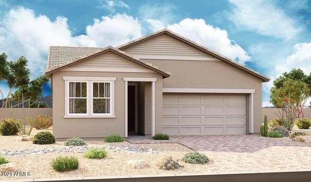 2870 N Blossom Lane, Casa Grande, AZ 85122 (MLS #6295669) :: The AZ Performance PLUS+ Team