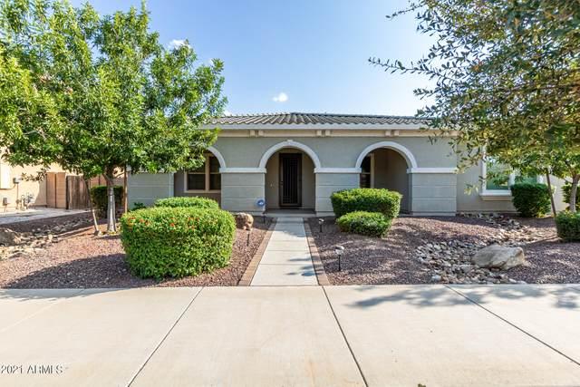 21425 E Sunset Drive, Queen Creek, AZ 85142 (MLS #6295675) :: Elite Home Advisors