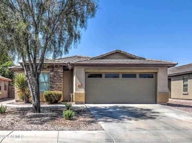 5514 S Dove Valley, Buckeye, AZ 85326 (MLS #6295678) :: Elite Home Advisors