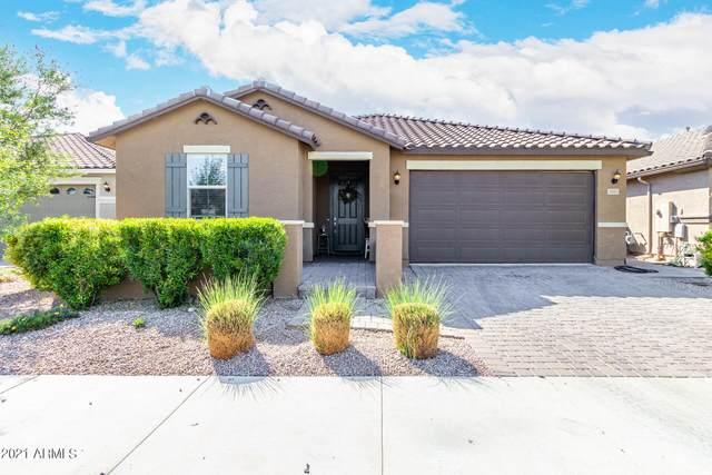 3963 E Constitution Drive, Gilbert, AZ 85296 (MLS #6295685) :: The Garcia Group