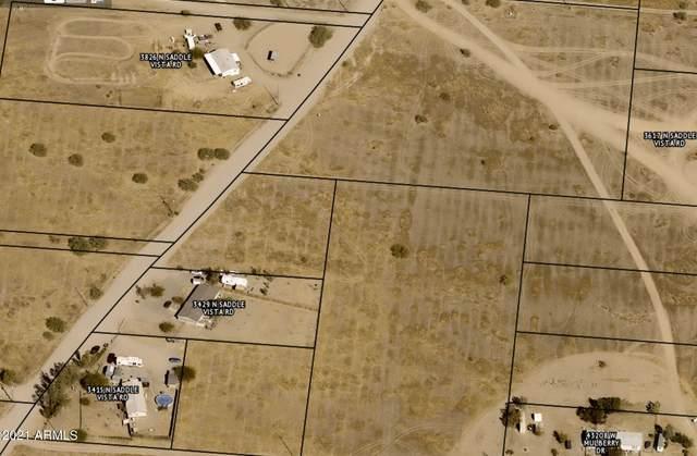 3617 N Saddle Vista Road, Tonopah, AZ 85354 (MLS #6295699) :: Fred Delgado Real Estate Group