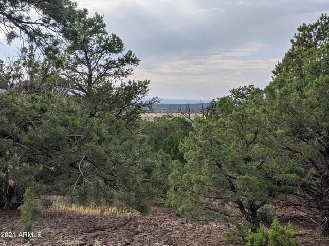 44 N County Road 8141 Drive, Vernon, AZ 85940 (MLS #6295702) :: The Daniel Montez Real Estate Group