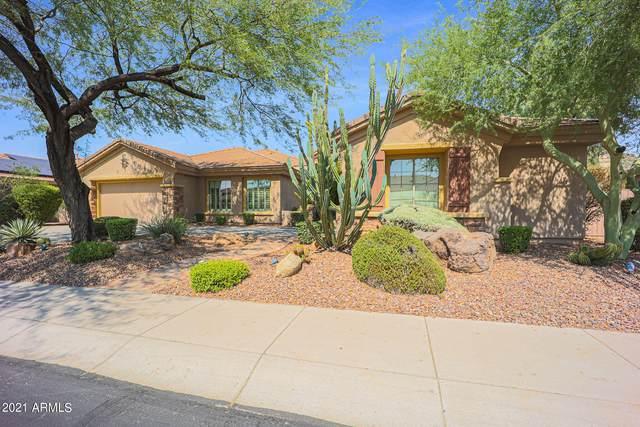 41913 N Signal Hill Court, Phoenix, AZ 85086 (MLS #6295721) :: Kepple Real Estate Group