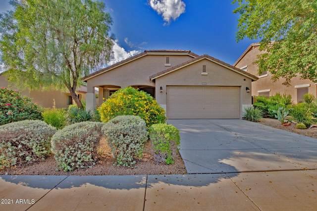 23771 W Yavapai Street, Buckeye, AZ 85326 (MLS #6295726) :: Kepple Real Estate Group