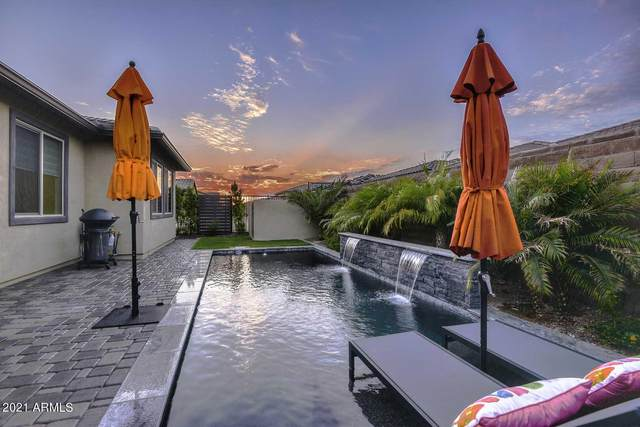 13278 W Palo Brea Lane, Peoria, AZ 85383 (MLS #6295731) :: Elite Home Advisors