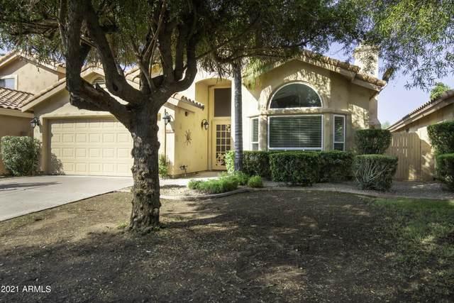 12798 N 95TH Way, Scottsdale, AZ 85260 (MLS #6295732) :: Klaus Team Real Estate Solutions