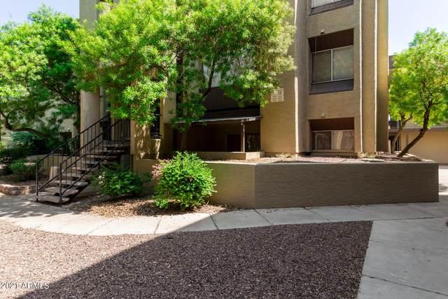 461 W Holmes Avenue #162, Mesa, AZ 85210 (MLS #6295736) :: Klaus Team Real Estate Solutions