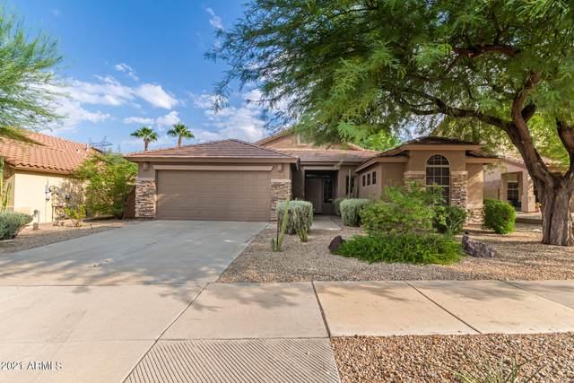 17522 W Wandering Creek Road, Goodyear, AZ 85338 (MLS #6295743) :: Klaus Team Real Estate Solutions