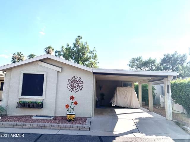 6233 S Pinehurst Drive, Chandler, AZ 85249 (MLS #6295744) :: Midland Real Estate Alliance