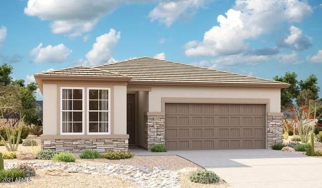 738 W Kingman Drive, Casa Grande, AZ 85122 (MLS #6295746) :: The AZ Performance PLUS+ Team