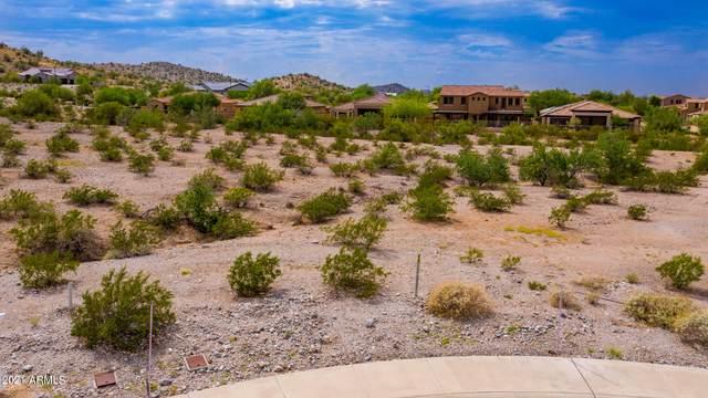 17736 W Paseo Way, Goodyear, AZ 85338 (MLS #6295748) :: The Daniel Montez Real Estate Group