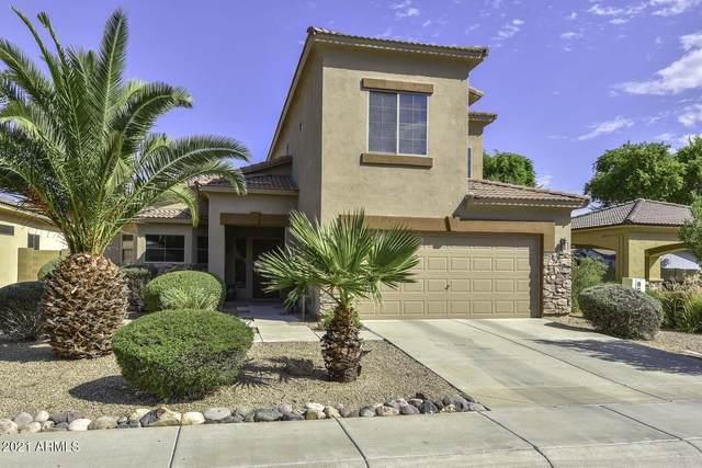 12104 W Ironwood Street, El Mirage, AZ 85335 (MLS #6295754) :: Power Realty Group Model Home Center