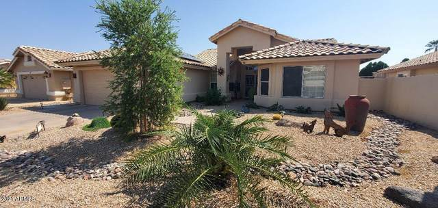14613 W Morning Star Trail, Surprise, AZ 85374 (MLS #6295763) :: My Home Group