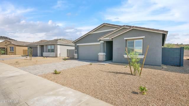 26459 N 133RD Avenue, Peoria, AZ 85383 (MLS #6295767) :: Nate Martinez Team