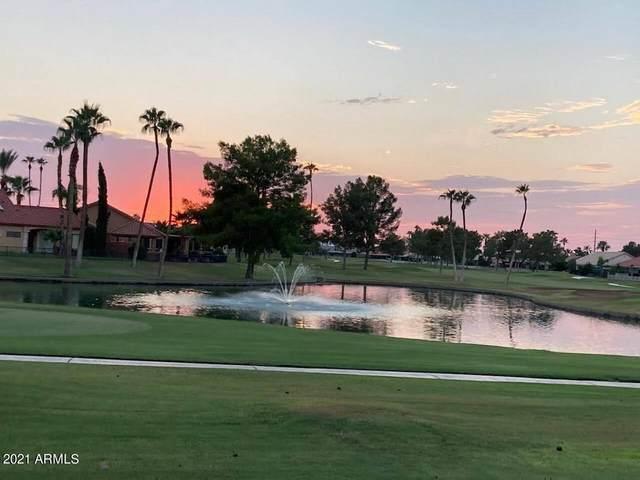 25228 S Flame Tree Drive, Sun Lakes, AZ 85248 (MLS #6295790) :: Midland Real Estate Alliance