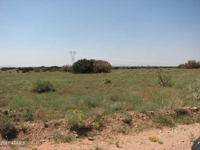 LOT 208 Chevelon Canyon Ranch, Heber, AZ 85928 (MLS #6295819) :: Executive Realty Advisors