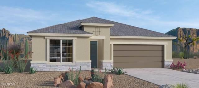 44401 W Palo Abeto Drive, Maricopa, AZ 85138 (MLS #6295827) :: Selling AZ Homes Team