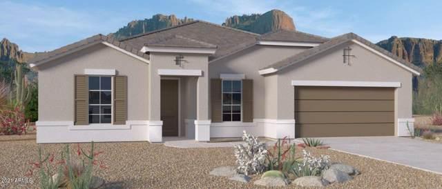 44443 W Palo Abeto Drive, Maricopa, AZ 85138 (MLS #6295835) :: Midland Real Estate Alliance