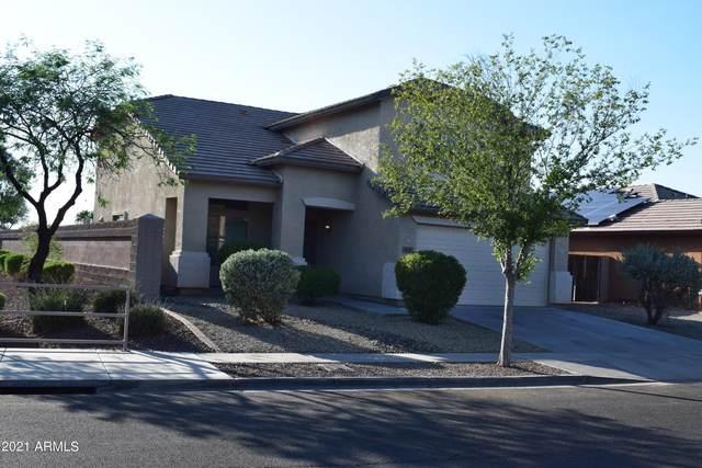 638 S 111th Ln Lane, Avondale, AZ 85323 (MLS #6295837) :: My Home Group