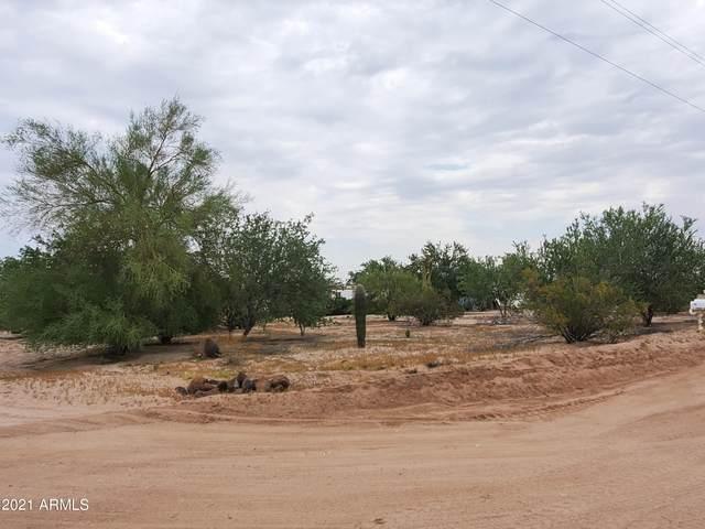 1907 S Morning Dove Street, Maricopa, AZ 85139 (MLS #6295839) :: The Garcia Group