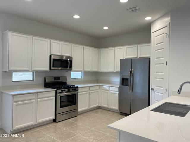 2686 S Reavis Falls Road, Apache Junction, AZ 85119 (MLS #6295909) :: Yost Realty Group at RE/MAX Casa Grande
