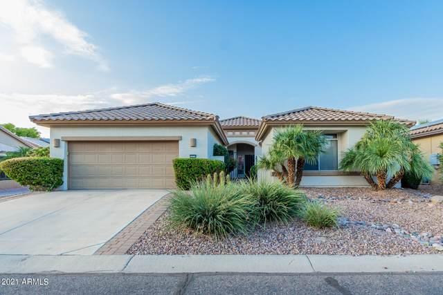 16254 W Indianola Avenue, Goodyear, AZ 85395 (MLS #6295937) :: Zolin Group