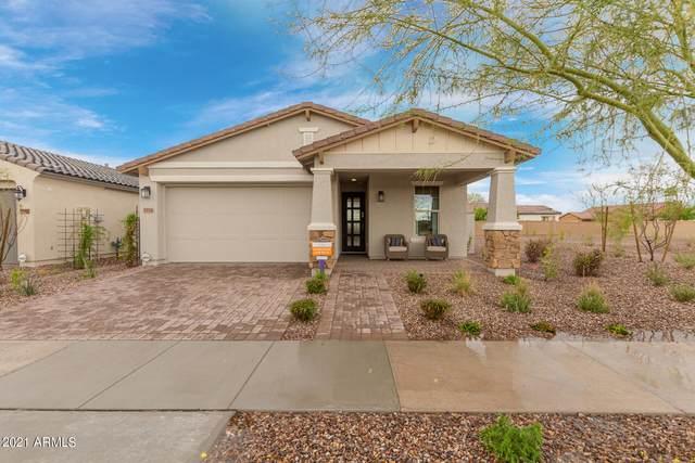 5554 S Archer, Mesa, AZ 85212 (MLS #6295967) :: Klaus Team Real Estate Solutions