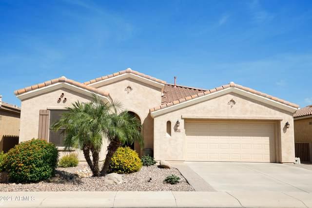 4068 E Indigo Street, Gilbert, AZ 85298 (MLS #6295969) :: The Riddle Group