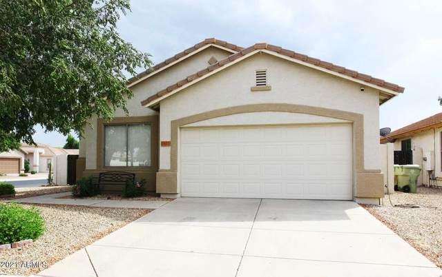 6603 W Golden Lane, Glendale, AZ 85302 (MLS #6295973) :: Selling AZ Homes Team