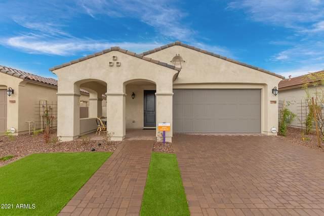 5558 S Archer, Mesa, AZ 85212 (MLS #6295990) :: The Copa Team   The Maricopa Real Estate Company