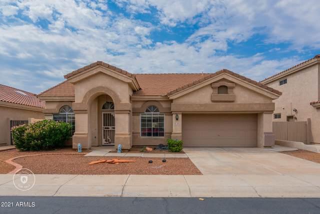 1219 W Waltann Lane, Phoenix, AZ 85023 (MLS #6295995) :: Justin Brown   Venture Real Estate and Investment LLC
