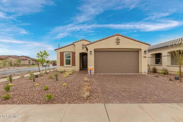 5562 S Archer, Mesa, AZ 85212 (MLS #6296010) :: Klaus Team Real Estate Solutions