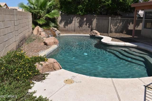 656 W Nopal Avenue, Mesa, AZ 85210 (MLS #6296012) :: My Home Group