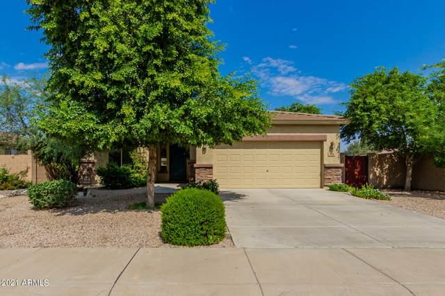 1018 W Corriente Drive, San Tan Valley, AZ 85143 (MLS #6296025) :: My Home Group