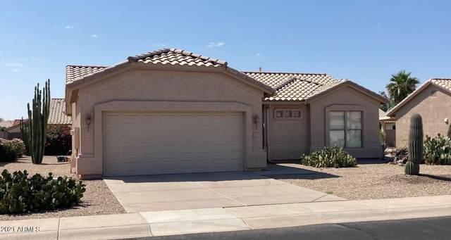 1251 E Runaway Bay Drive, Chandler, AZ 85249 (MLS #6296031) :: The Daniel Montez Real Estate Group