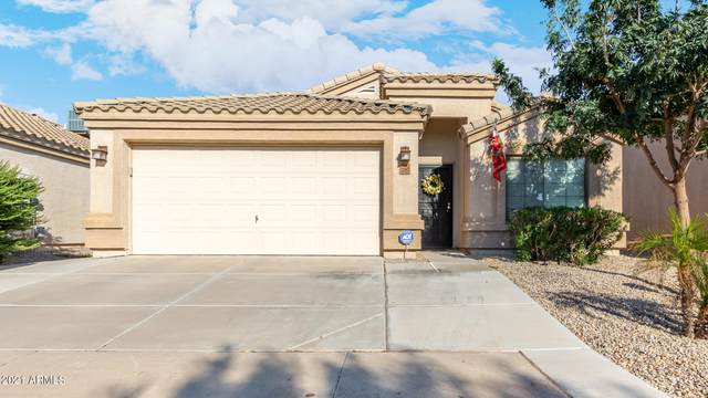 23983 N High Dunes Drive, Florence, AZ 85132 (MLS #6296038) :: The Riddle Group
