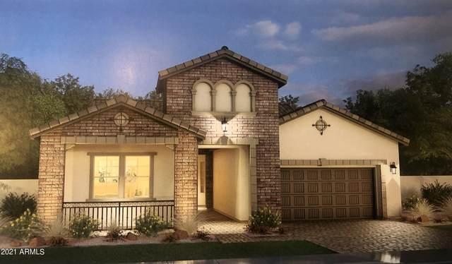2353 E Athena Avenue, Gilbert, AZ 85297 (MLS #6296085) :: Selling AZ Homes Team
