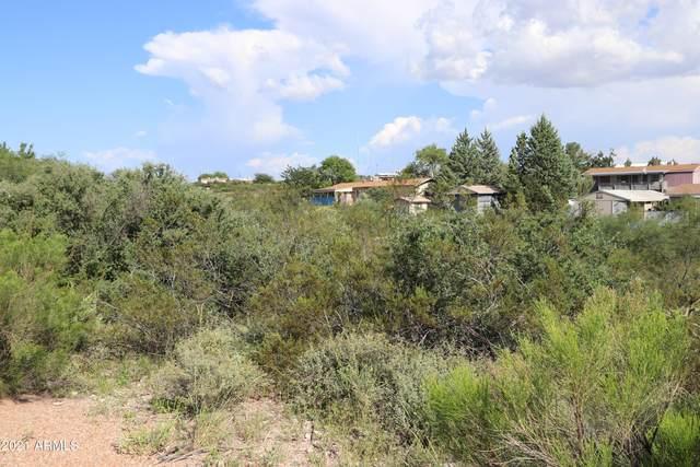 TBD Mesa Circle, Tombstone, AZ 85638 (MLS #6296099) :: Zolin Group