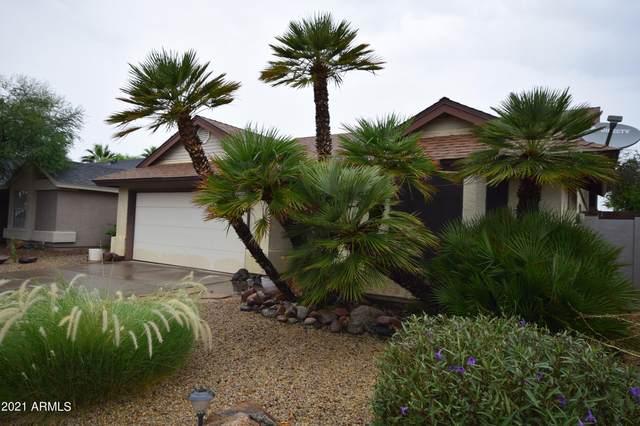 3876 E Everett Drive, Phoenix, AZ 85032 (MLS #6296106) :: Klaus Team Real Estate Solutions