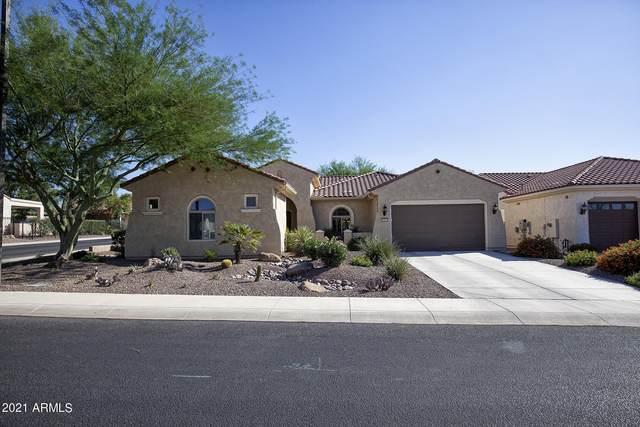 26865 W Potter Drive, Buckeye, AZ 85396 (MLS #6296114) :: Elite Home Advisors