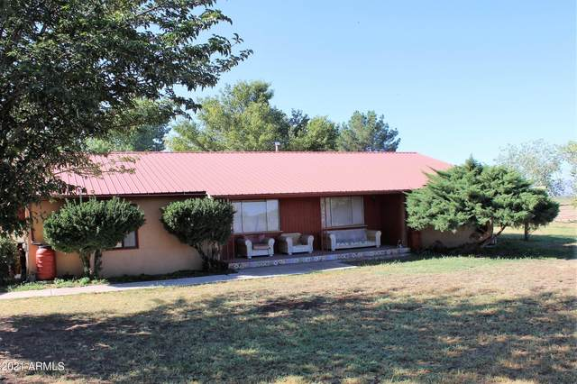 10055 N Mormon Road, Elfrida, AZ 85610 (MLS #6296140) :: Yost Realty Group at RE/MAX Casa Grande