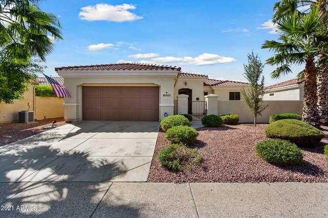 13157 W Nogales Drive, Sun City West, AZ 85375 (MLS #6296146) :: Elite Home Advisors