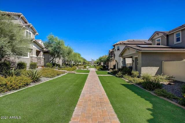 12334 W Cactus Blossom Trail, Peoria, AZ 85383 (MLS #6296162) :: The Riddle Group