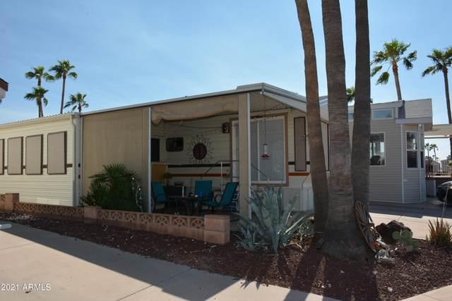 1032 W Pecos Avenue, Apache Junction, AZ 85119 (MLS #6296197) :: Elite Home Advisors