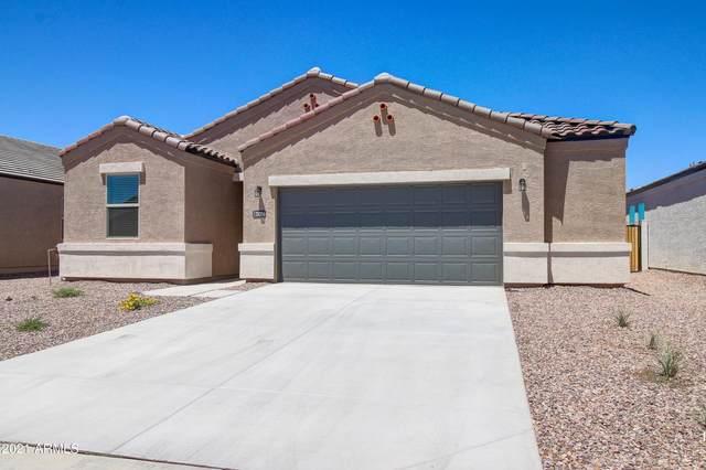 28356 N Chalcocite Street, San Tan Valley, AZ 85143 (MLS #6296199) :: Selling AZ Homes Team