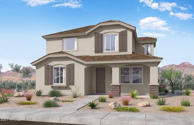 14237 W Hackamore Drive, Surprise, AZ 85387 (MLS #6296211) :: Justin Brown | Venture Real Estate and Investment LLC